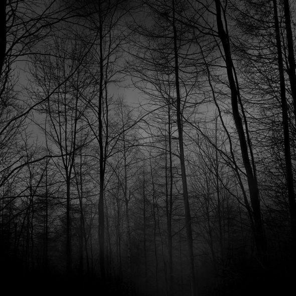 dark-w
